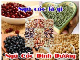 Bột ngũ cốc là gì